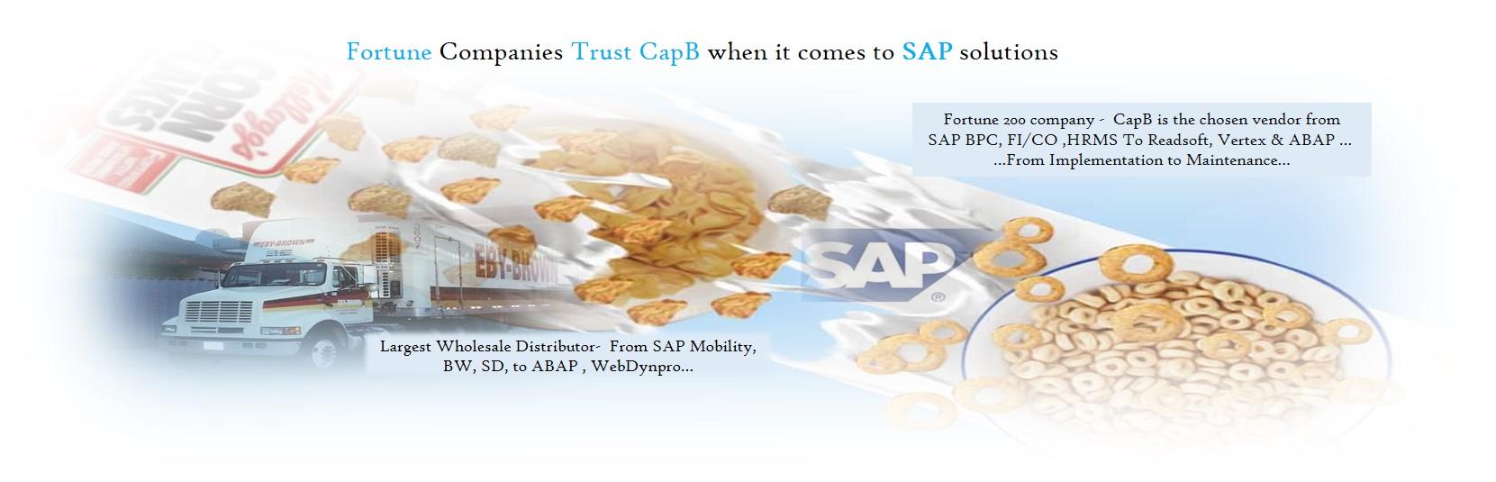 CAPB-SAP-SOLUTION-GLOBAL-IMPLEMENTATION-FORTUNE-50-SAP-BPC-BW-ABAP-BASIS-MOBILITY-WEBDYNPRO-SD-LE-MM-PP-PI-READSOFT-VERTEX-TRANSPORTATION-WAREHOUSE-TPO-BASIS-FSCM-FICO-CLOUD-IDS-SCHEER-PROJECT-SUP-SMP-2